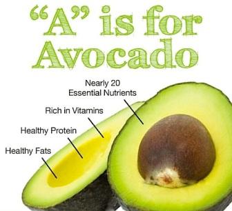 avocado 4.jpg